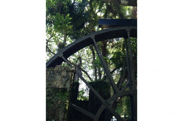 Water Wheel – Montego Bay, Jamaica3