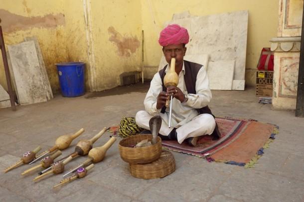 Snake Charmer – Jaipur, India