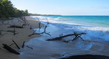 Bluff Beach – Bocas del Toro, Panama