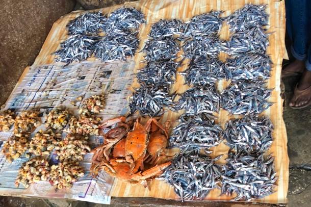 Darajani Spice Market – Stone Town, Tanzania2