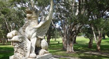 Centennial Park - Sydney, Australia