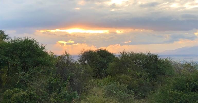 Morning Birds – Ngorongoro Conservation Area, Tanzania