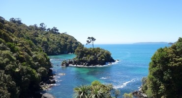 Ocean and Birds – Stewart Island, New Zealand