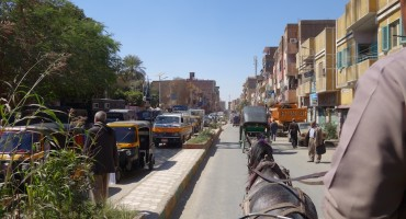 Horse Carriage – Edfu, Egypt