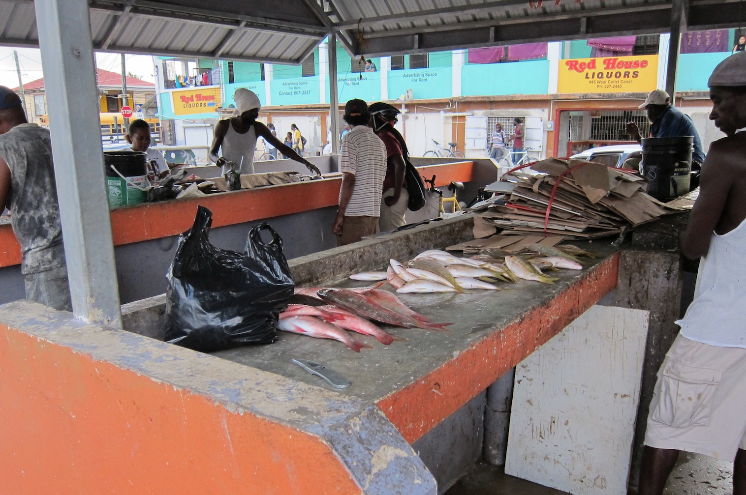 Conchshell bay fish market belize city belize the for City fish market